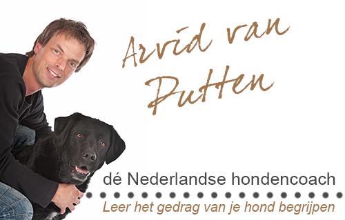 Partner Arvid van Putten